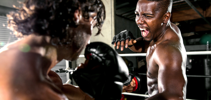 Why Should You Include Mixed Martial Arts In Your Fitness Regime?