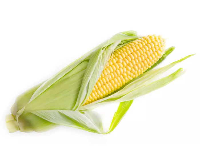 Corn | FITPASS