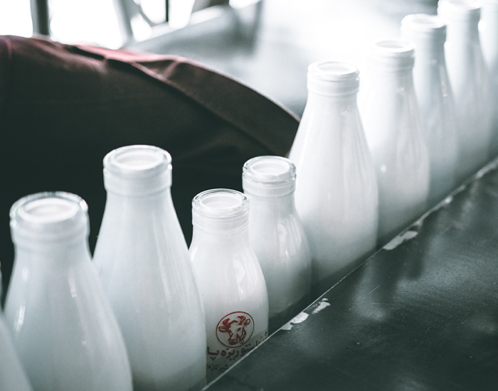 Top 5 Reasons Why You Should Include Milk in Your Diet