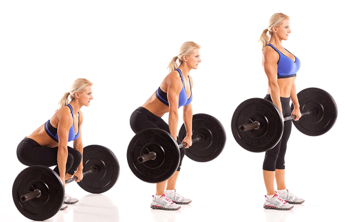 Barbell Deadlift for Back workout
