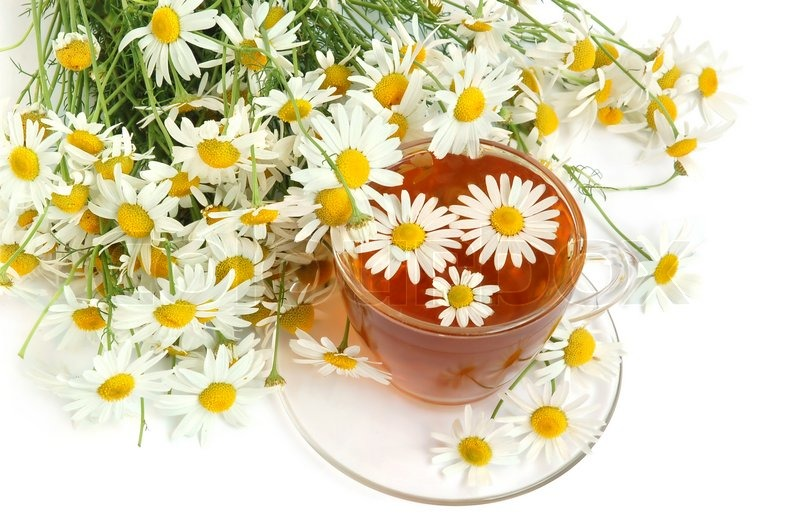 Herbal Chamomile Tea - FITPASS