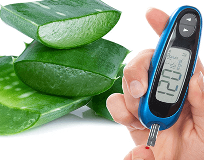 Aloe Vera - Control your blood sugar