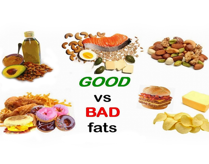 Have a sneak peek on the truth about fats