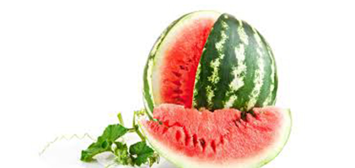 WATERMELON | FITPASS