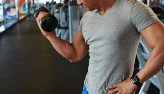 Barbell and Dumbbell Curls