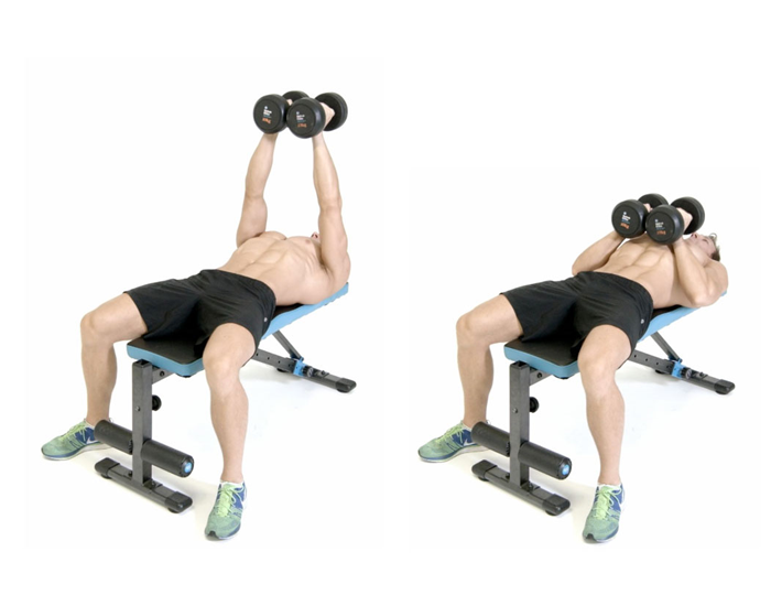 Dumbbell for chest
