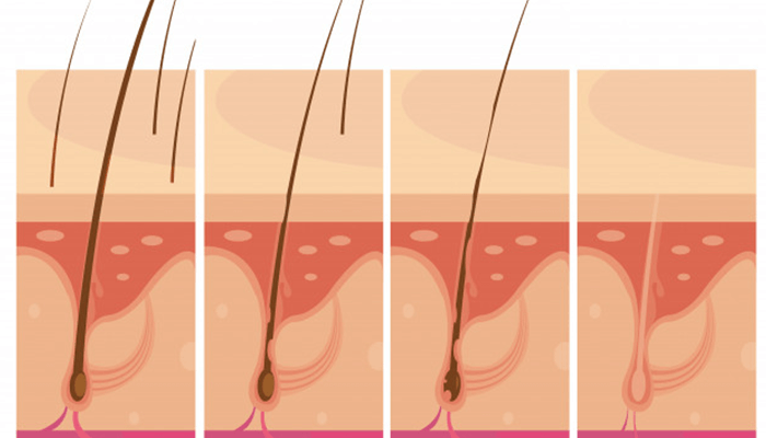Hair Loss and Damaged Skin