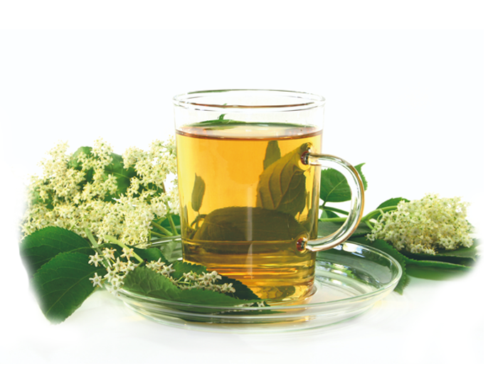 Green tea benefits in Weight loss