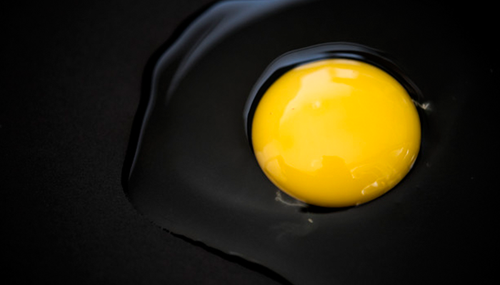You should not Eat Egg Yolk
