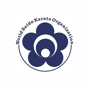 Seido Karate India Greater Kailash 1