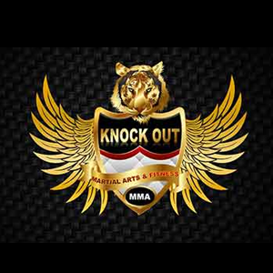 Knockout Martial Art And Fitness Laxmi Nagar