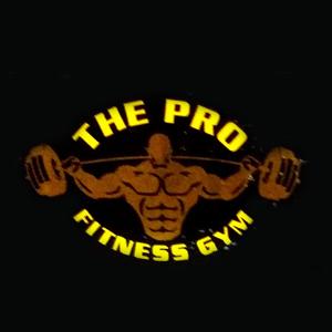 The Pro Fitness Gym Rakhiyal