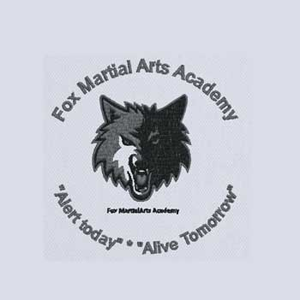 Fox Martial Arts Academy Sector 17 Dwarka